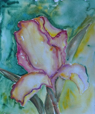 WatercolorIris01